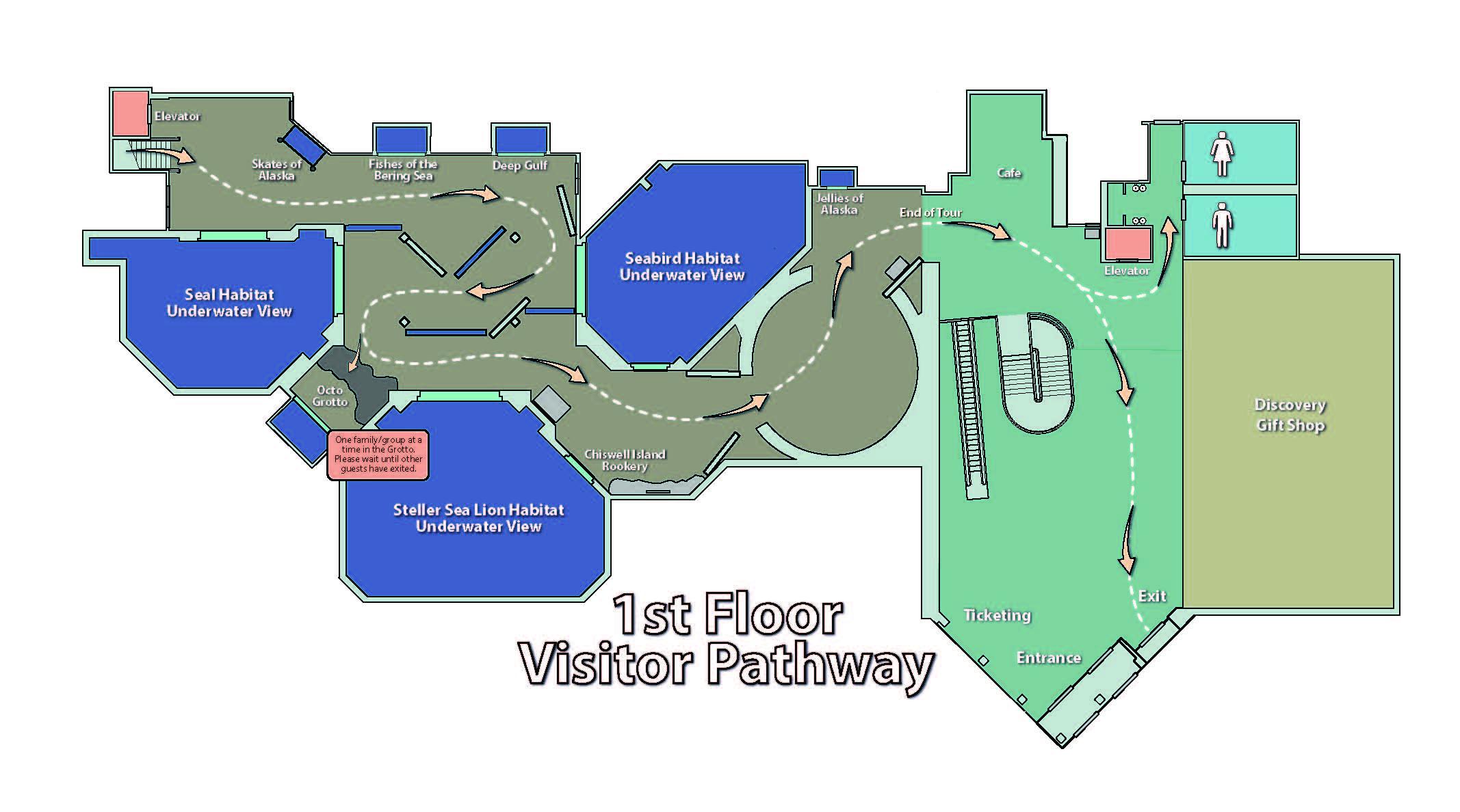 1st Floor Visitor Pathway